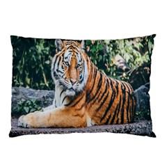 Animal Big Cat Safari Tiger Pillow Case