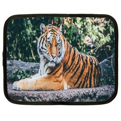 Animal Big Cat Safari Tiger Netbook Case (xxl)
