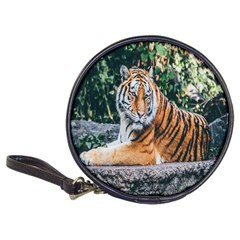Animal Big Cat Safari Tiger Classic 20 Cd Wallets
