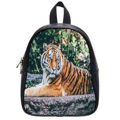 Animal Big Cat Safari Tiger School Bag (small)