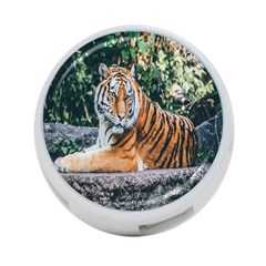 Animal Big Cat Safari Tiger 4 Port Usb Hub (one Side)