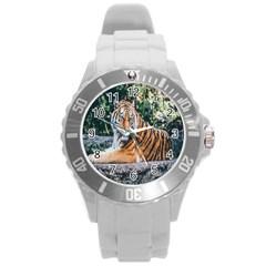 Animal Big Cat Safari Tiger Round Plastic Sport Watch (l)