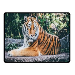 Animal Big Cat Safari Tiger Double Sided Fleece Blanket (small)
