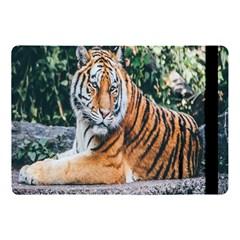 Animal Big Cat Safari Tiger Apple Ipad Pro 10 5   Flip Case