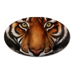 The Tiger Face Oval Magnet