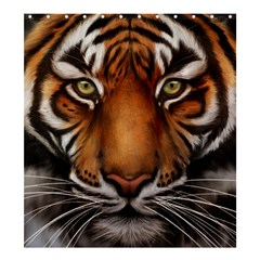 The Tiger Face Shower Curtain 66  X 72  (large)