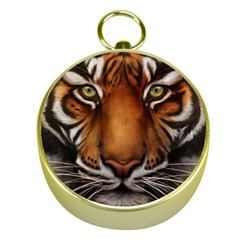 The Tiger Face Gold Compasses