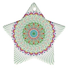 Flower Abstract Floral Ornament (star)