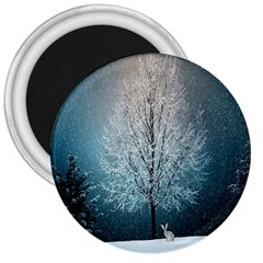 Winter Wintry Snow Snow Landscape 3  Magnets