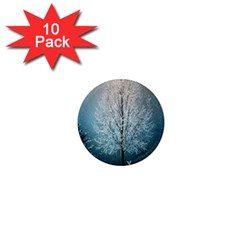 Winter Wintry Snow Snow Landscape 1  Mini Magnet (10 Pack)