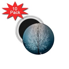 Winter Wintry Snow Snow Landscape 1 75  Magnets (10 Pack)