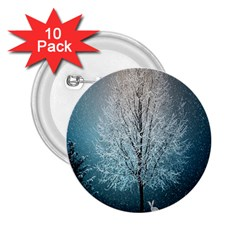 Winter Wintry Snow Snow Landscape 2 25  Buttons (10 Pack)