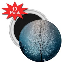 Winter Wintry Snow Snow Landscape 2 25  Magnets (10 Pack)