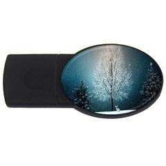 Winter Wintry Snow Snow Landscape Usb Flash Drive Oval (2 Gb)