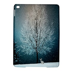 Winter Wintry Snow Snow Landscape Ipad Air 2 Hardshell Cases