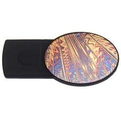 Flourish Artwork Fractal Expanding Usb Flash Drive Oval (4 Gb)