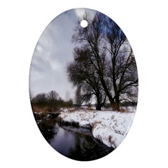 Winter Bach Wintry Snow Water Ornament (oval)