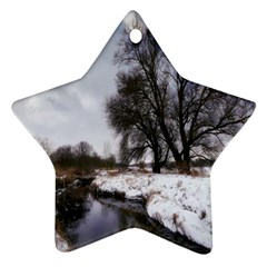 Winter Bach Wintry Snow Water Ornament (star)