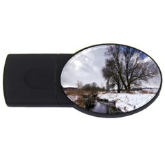 Winter Bach Wintry Snow Water Usb Flash Drive Oval (4 Gb)