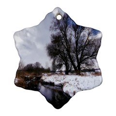 Winter Bach Wintry Snow Water Ornament (snowflake)