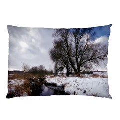 Winter Bach Wintry Snow Water Pillow Case (two Sides)