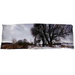 Winter Bach Wintry Snow Water Body Pillow Case (dakimakura)