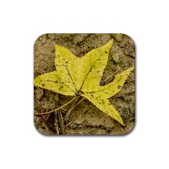Fall Yellow Leaf Drink Coasters 4 Pack (square)
