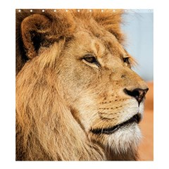 Big Lion Looking Far Away Shower Curtain 66  X 72  (large)