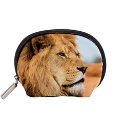 Big Lion Looking Far Away Accessory Pouches (small)