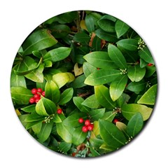 Christmas Season Floral Green Red Skimmia Flower Round Mousepads