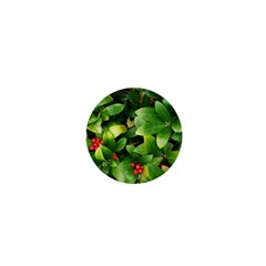Christmas Season Floral Green Red Skimmia Flower 1  Mini Buttons