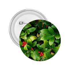 Christmas Season Floral Green Red Skimmia Flower 2 25  Buttons