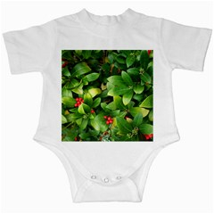 Christmas Season Floral Green Red Skimmia Flower Infant Creepers