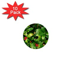 Christmas Season Floral Green Red Skimmia Flower 1  Mini Buttons (10 Pack)