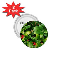 Christmas Season Floral Green Red Skimmia Flower 1 75  Buttons (10 Pack)