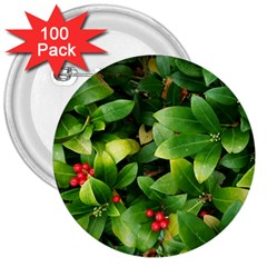 Christmas Season Floral Green Red Skimmia Flower 3  Buttons (100 Pack)