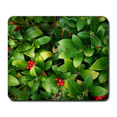 Christmas Season Floral Green Red Skimmia Flower Large Mousepads
