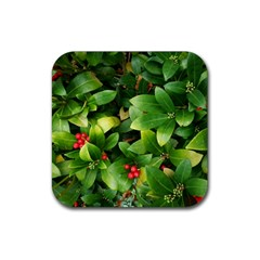 Christmas Season Floral Green Red Skimmia Flower Rubber Square Coaster (4 Pack)