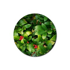 Christmas Season Floral Green Red Skimmia Flower Rubber Round Coaster (4 Pack)