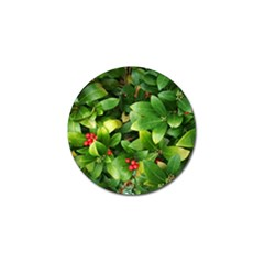 Christmas Season Floral Green Red Skimmia Flower Golf Ball Marker (4 Pack)