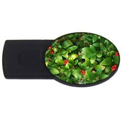 Christmas Season Floral Green Red Skimmia Flower Usb Flash Drive Oval (2 Gb)