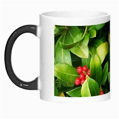 Christmas Season Floral Green Red Skimmia Flower Morph Mugs