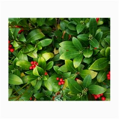 Christmas Season Floral Green Red Skimmia Flower Small Glasses Cloth