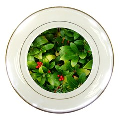 Christmas Season Floral Green Red Skimmia Flower Porcelain Plates