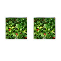 Christmas Season Floral Green Red Skimmia Flower Cufflinks (square)
