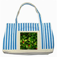 Christmas Season Floral Green Red Skimmia Flower Striped Blue Tote Bag