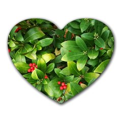Christmas Season Floral Green Red Skimmia Flower Heart Mousepads