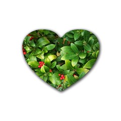 Christmas Season Floral Green Red Skimmia Flower Heart Coaster (4 Pack)