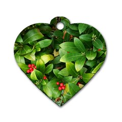 Christmas Season Floral Green Red Skimmia Flower Dog Tag Heart (two Sides)