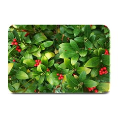 Christmas Season Floral Green Red Skimmia Flower Plate Mats